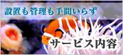 熱帯魚・水槽のレンタル・メンテナンスを行う会社アクアデザイン福岡のサービス内容